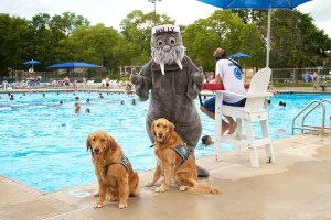 William Grady Pool hosts Paws at the Pool