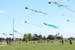 Families flock to kites soaring over Business 20