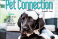 Pet Connection for Summer 2019